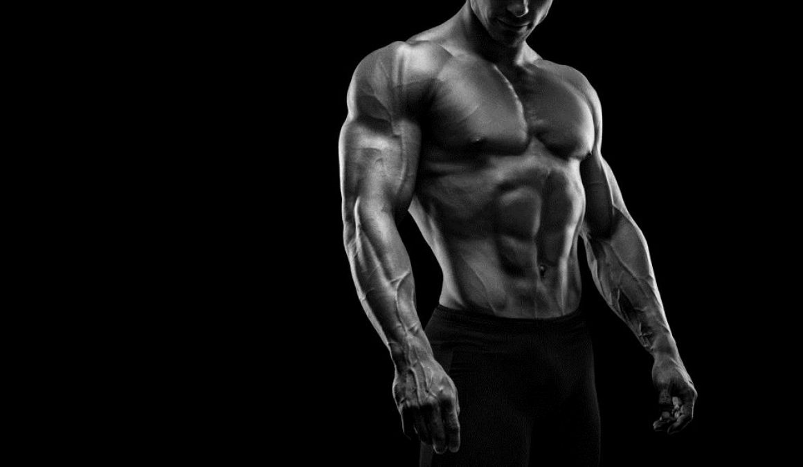 The-Masculinity-of-Vascularity